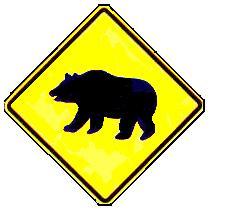 bearcrossing1